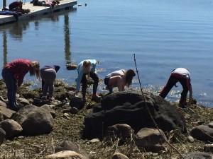 WaterfrontEcology