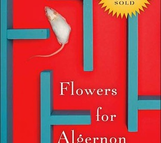 flowers for algernon 3 Flowers for algernon - 2015 shiratori sakuto is 28, but has the intelligence of a 6-year-old boy he works for dream flower service, a flower distribution centre which provides employment for problem youth.